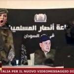 silvio berlusconi videomessaggio 2013 (2)
